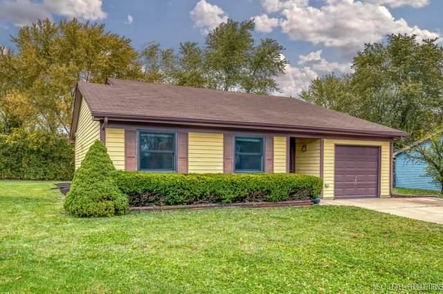 30w270 Dorchester Court, Warrenville, IL 60555 (MLS #10911635) :: Schoon Family Group