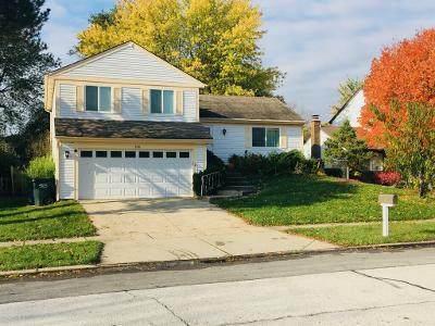 106 Appian Way, Vernon Hills, IL 60061 (MLS #10911784) :: Helen Oliveri Real Estate