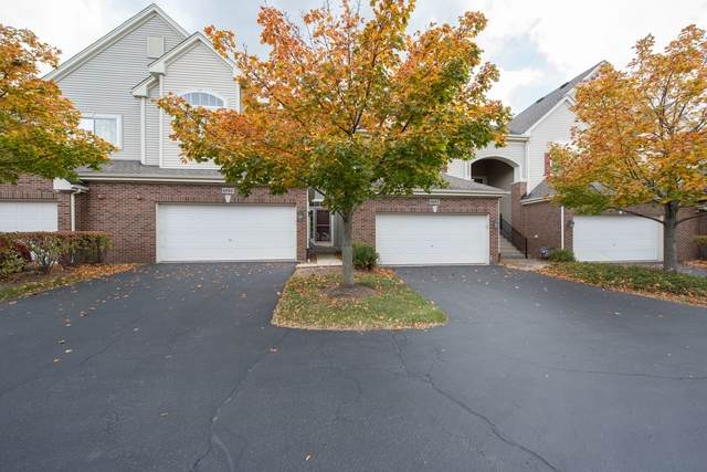 6093 Delaney Drive 21-2, Hoffman Estates, IL 60192 (MLS #10912043) :: Janet Jurich