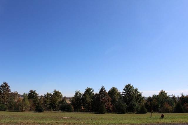 Lot 8 IL Rt 84, Thomson, IL 61285 (MLS #10912266) :: BN Homes Group