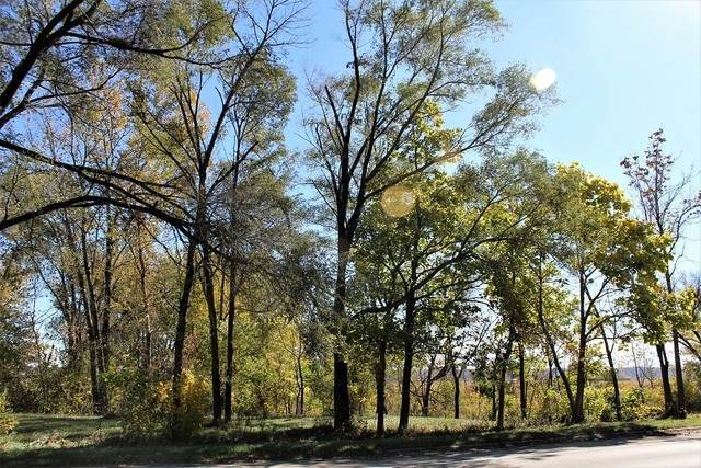 Lot 10 IL Rt 84, Thomson, IL 61285 (MLS #10912286) :: BN Homes Group