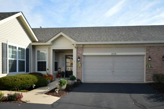 1528 W Ludington Circle, Romeoville, IL 60446 (MLS #10912339) :: John Lyons Real Estate