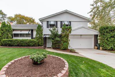 531 Willow Court, Waukegan, IL 60085 (MLS #10912378) :: The Wexler Group at Keller Williams Preferred Realty