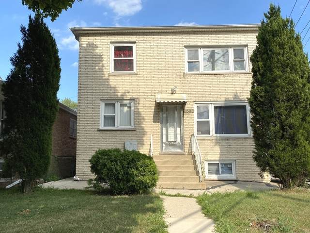 2505 N 75th Avenue, Elmwood Park, IL 60707 (MLS #10912826) :: Helen Oliveri Real Estate