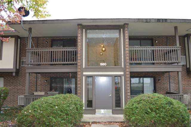 560 Somerset Lane #4, Crystal Lake, IL 60014 (MLS #10912901) :: Littlefield Group