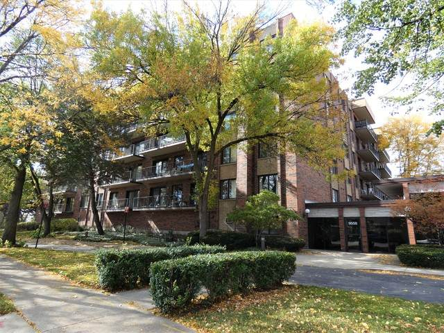 9558 Gross Point Road 302A, Skokie, IL 60076 (MLS #10913051) :: Helen Oliveri Real Estate