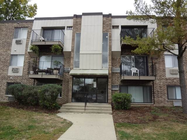 1453 Winslowe Drive #302, Palatine, IL 60074 (MLS #10913070) :: The Wexler Group at Keller Williams Preferred Realty