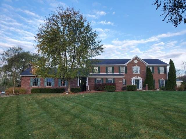 22560 Sherman Road, Steger, IL 60475 (MLS #10913088) :: Lewke Partners