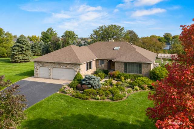6N393 Prairie Valley Drive, St. Charles, IL 60175 (MLS #10913133) :: John Lyons Real Estate