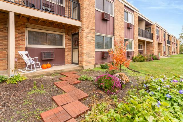 1313 S Rebecca Road #120, Lombard, IL 60148 (MLS #10913275) :: The Wexler Group at Keller Williams Preferred Realty