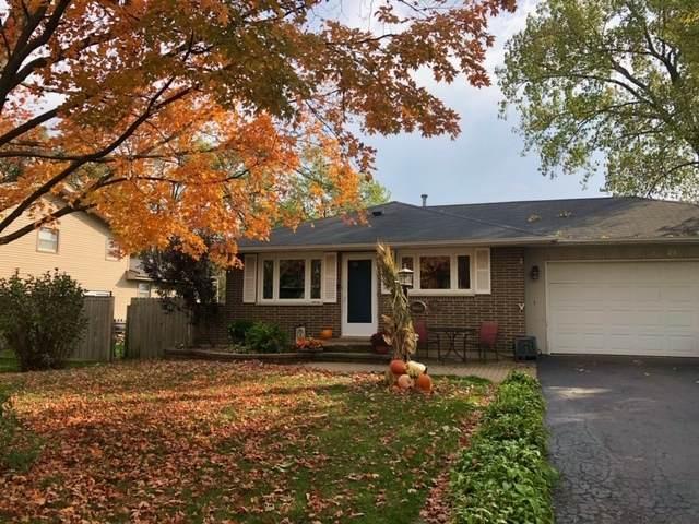 2325 Springhill Lane, Lindenhurst, IL 60046 (MLS #10913306) :: John Lyons Real Estate