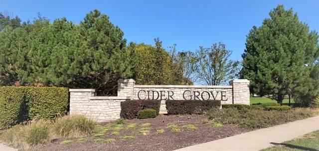 11541 Beacon Avenue, Huntley, IL 60142 (MLS #10913608) :: Angela Walker Homes Real Estate Group