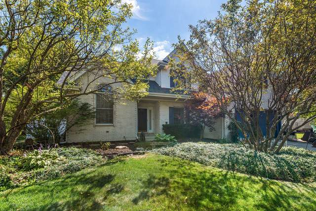 792 Downing Street, New Lenox, IL 60451 (MLS #10913617) :: Angela Walker Homes Real Estate Group