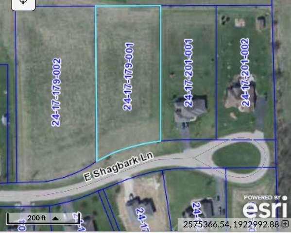 Lot 80 E Shagbark Lane, Rochelle, IL 61068 (MLS #10913661) :: John Lyons Real Estate