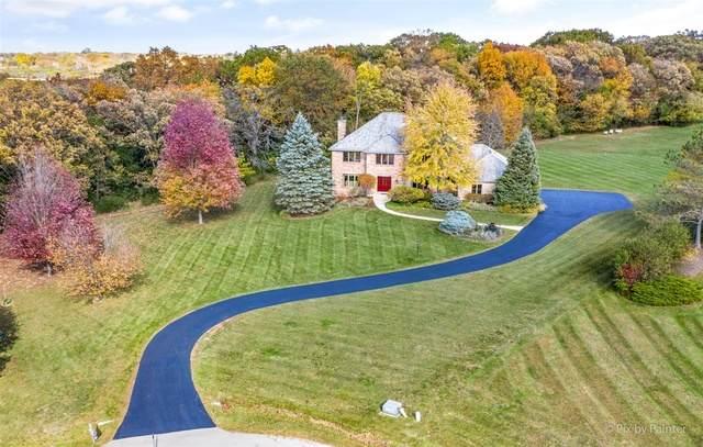 25715 N Broken Bow Pass, Barrington, IL 60010 (MLS #10913782) :: Helen Oliveri Real Estate