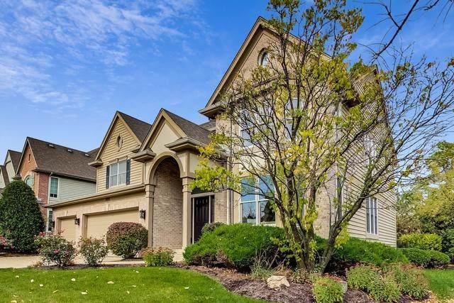 11170 Glenbrook Lane, Indian Head Park, IL 60525 (MLS #10913837) :: John Lyons Real Estate