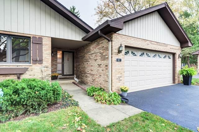 41 Castle Rock Lane, Bloomingdale, IL 60108 (MLS #10913895) :: Lewke Partners