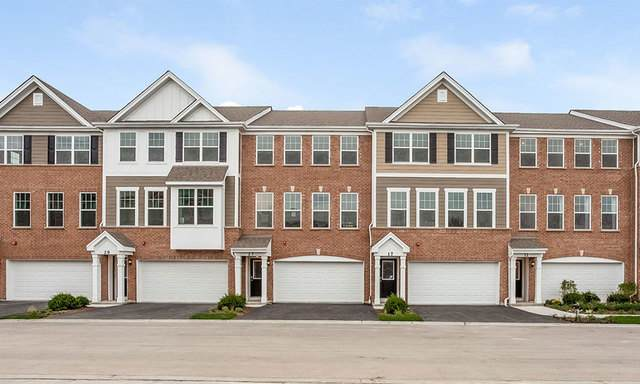 6 Grey Wolf Drive, Wheeling, IL 60090 (MLS #10913929) :: Helen Oliveri Real Estate