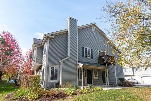 259 Windsor Court C, South Elgin, IL 60177 (MLS #10914165) :: Property Consultants Realty