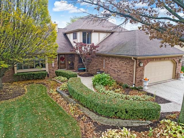 1708 Lakeview Drive, Darien, IL 60561 (MLS #10914255) :: Jacqui Miller Homes