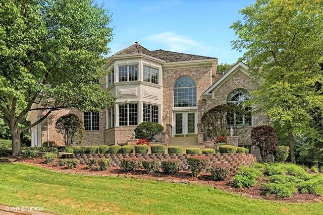 6 Tumblebrook Court, Burr Ridge, IL 60527 (MLS #10914284) :: Property Consultants Realty