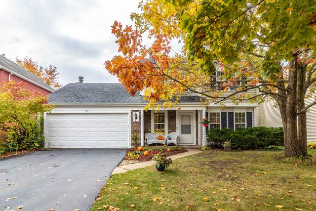 61 S Windsor Place, Mundelein, IL 60060 (MLS #10914327) :: BN Homes Group