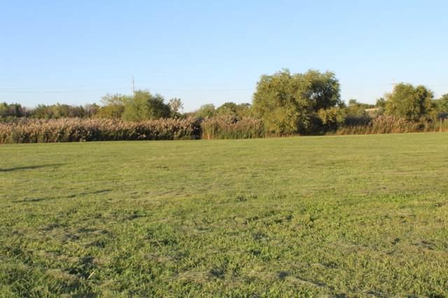 1921 Tallgrass Turn, Kankakee, IL 60901 (MLS #10914367) :: Jacqui Miller Homes