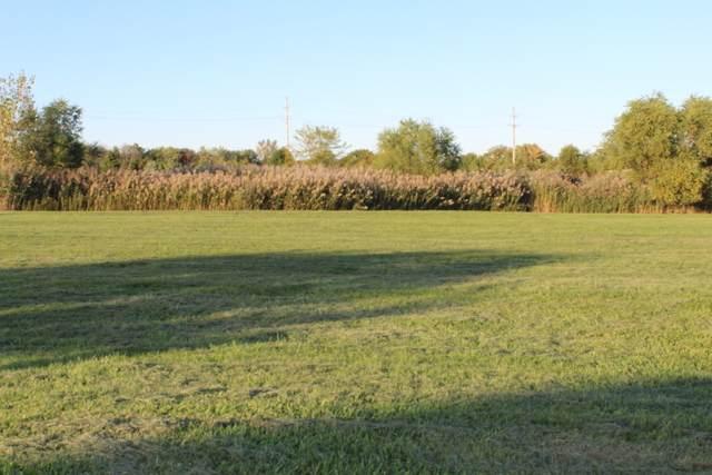 1919 Tallgrass Turn, Kankakee, IL 60901 (MLS #10914369) :: Jacqui Miller Homes