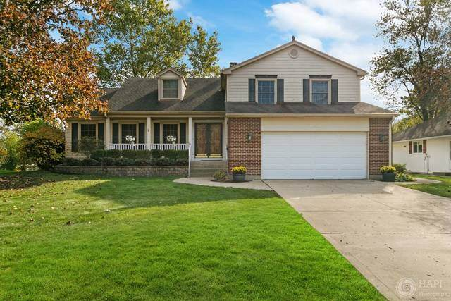 1085 W Hunting Drive, Palatine, IL 60067 (MLS #10914388) :: John Lyons Real Estate