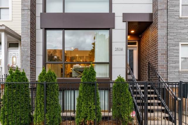 2538 N Ashland Avenue #1, Chicago, IL 60614 (MLS #10914551) :: Property Consultants Realty