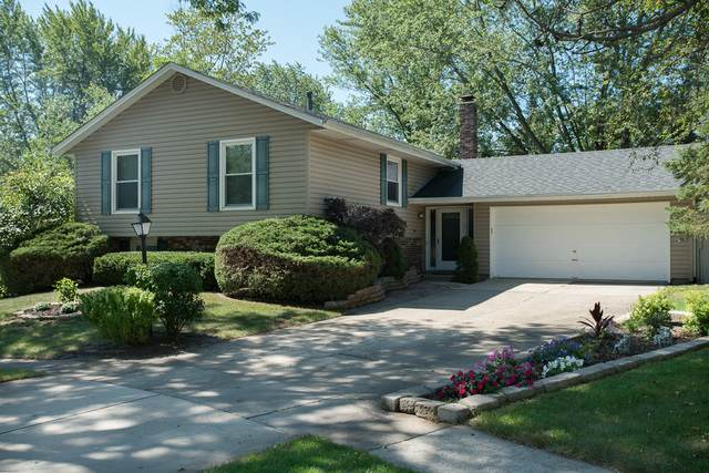 103 Televista Court, Vernon Hills, IL 60061 (MLS #10914638) :: John Lyons Real Estate