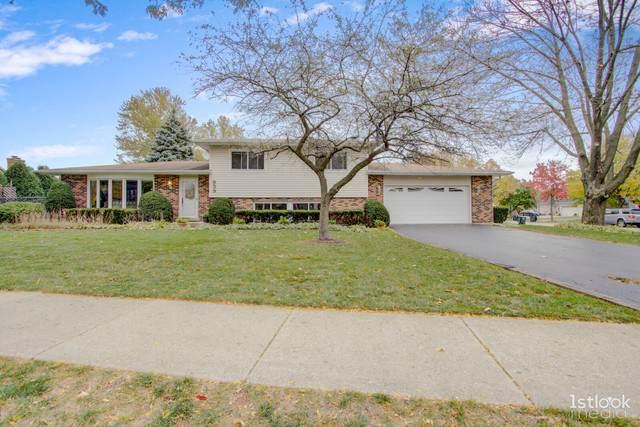 959 N Williams Drive, Palatine, IL 60074 (MLS #10914846) :: BN Homes Group