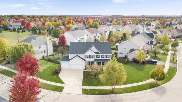 26610 Silverleaf Drive, Plainfield, IL 60585 (MLS #10914918) :: BN Homes Group