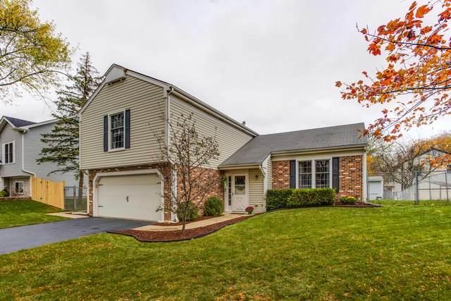 287 Hill Avenue, Bartlett, IL 60103 (MLS #10914961) :: Helen Oliveri Real Estate