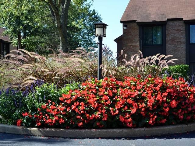 710 Saint Andrews Lane #8, Crystal Lake, IL 60014 (MLS #10914969) :: Helen Oliveri Real Estate