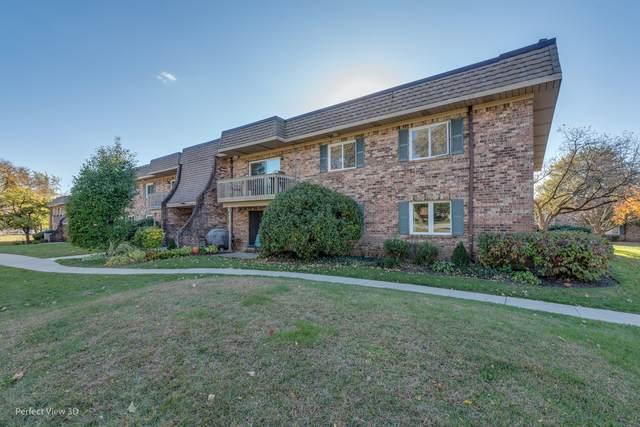 6s080 Park Meadow Drive 10G, Naperville, IL 60540 (MLS #10914992) :: Lewke Partners