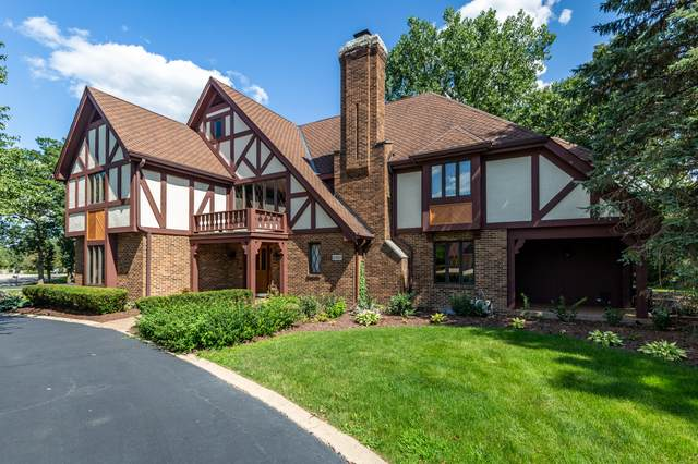 12307 W Spring Lake Drive, Homer Glen, IL 60491 (MLS #10915065) :: Property Consultants Realty