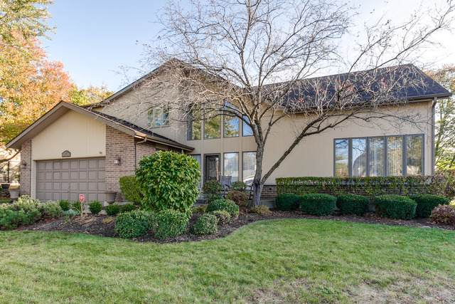 1517 Virginia Avenue, Libertyville, IL 60048 (MLS #10915078) :: Helen Oliveri Real Estate