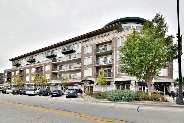 100 S Emerson Street #206, Mount Prospect, IL 60056 (MLS #10915089) :: Property Consultants Realty