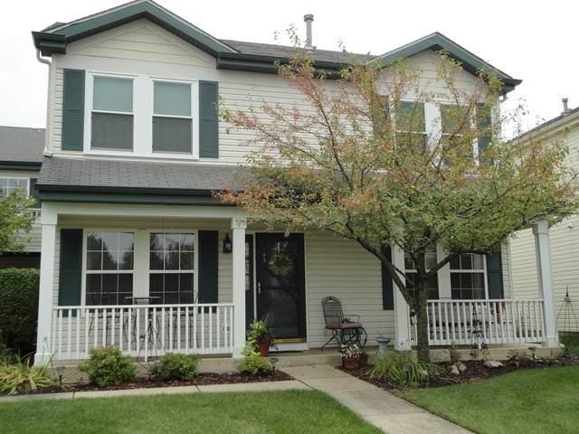 350 Ogden Falls Boulevard #350, Oswego, IL 60543 (MLS #10915128) :: BN Homes Group
