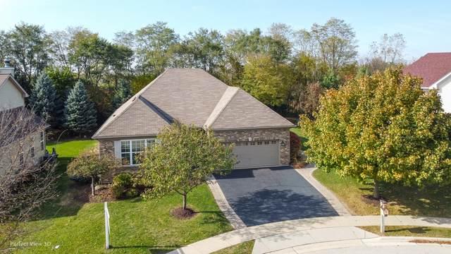 808 Beech Drive, Elgin, IL 60120 (MLS #10915343) :: Lewke Partners