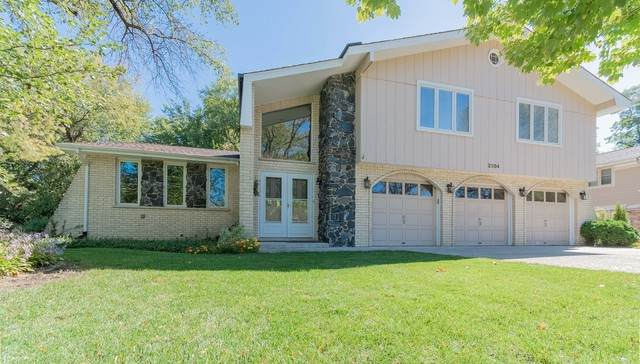 2304 Lisa Court, Palatine, IL 60067 (MLS #10915484) :: Property Consultants Realty