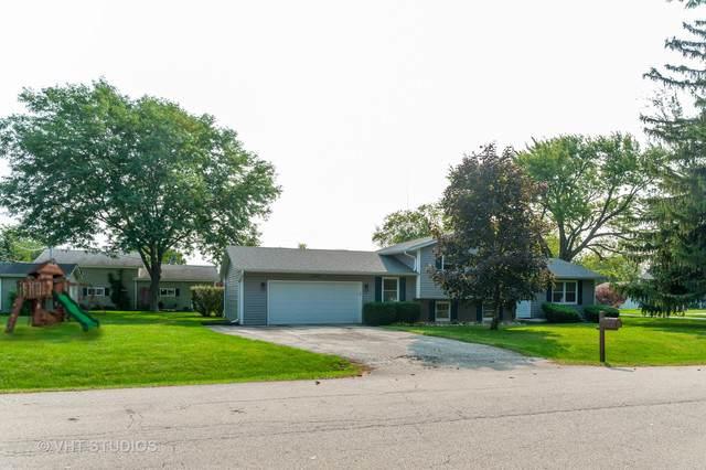 20651 N Elizabeth Avenue, Prairie View, IL 60069 (MLS #10915500) :: John Lyons Real Estate