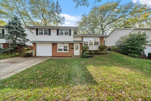 6509 163rd Place, Tinley Park, IL 60477 (MLS #10915514) :: Property Consultants Realty