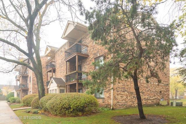 2219 Nichols Road 17F, Arlington Heights, IL 60004 (MLS #10915615) :: Helen Oliveri Real Estate