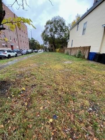 7601 S Eggelston Avenue, Chicago, IL 60620 (MLS #10915621) :: Helen Oliveri Real Estate
