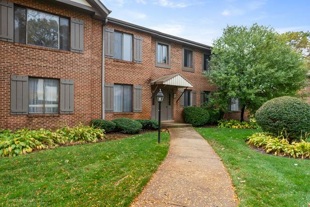 73 Parliament Drive East #115, Palos Heights, IL 60463 (MLS #10915753) :: The Wexler Group at Keller Williams Preferred Realty