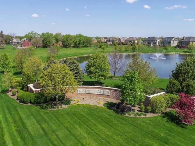 Spec Lot 62 Goldenrod Drive, St. Charles, IL 60175 (MLS #10915854) :: BN Homes Group