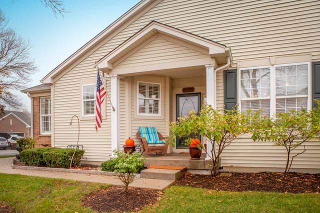 150 Briarwood Drive, Gilberts, IL 60136 (MLS #10915953) :: Janet Jurich