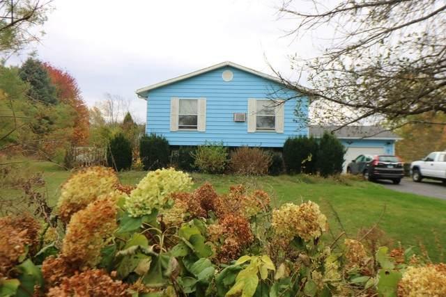 11003 Pheasant Lane, Woodstock, IL 60098 (MLS #10915965) :: Helen Oliveri Real Estate